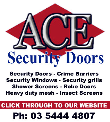 Ace Security Doors